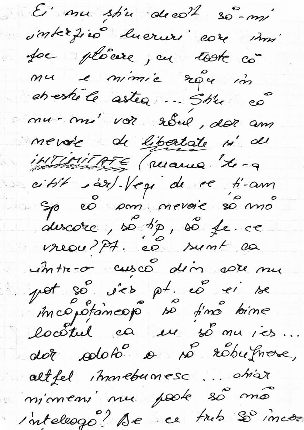 fragment din jurnalul personal, scris de mână