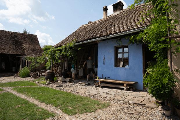 curte plină de verdeață și cuptor de lemne