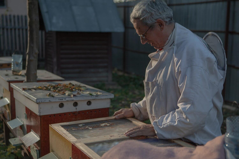 bărbat în costum de apicultor privește o stupină
