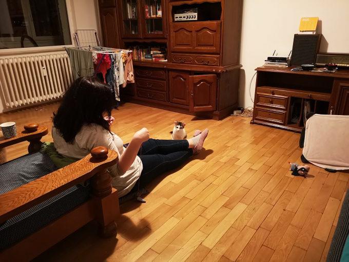 Autoarea textului în sufragerie cu pisica, cu care se joacă cu o ață.