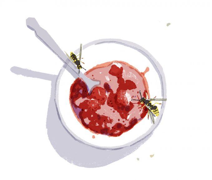 ilustrație bol cu dulceață și două albine