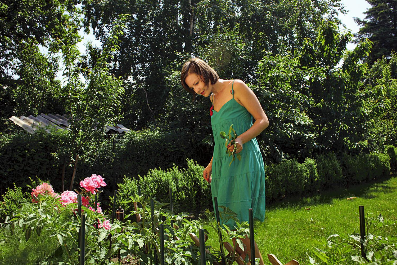 Melania Medeleanu are grijă de grădina ei