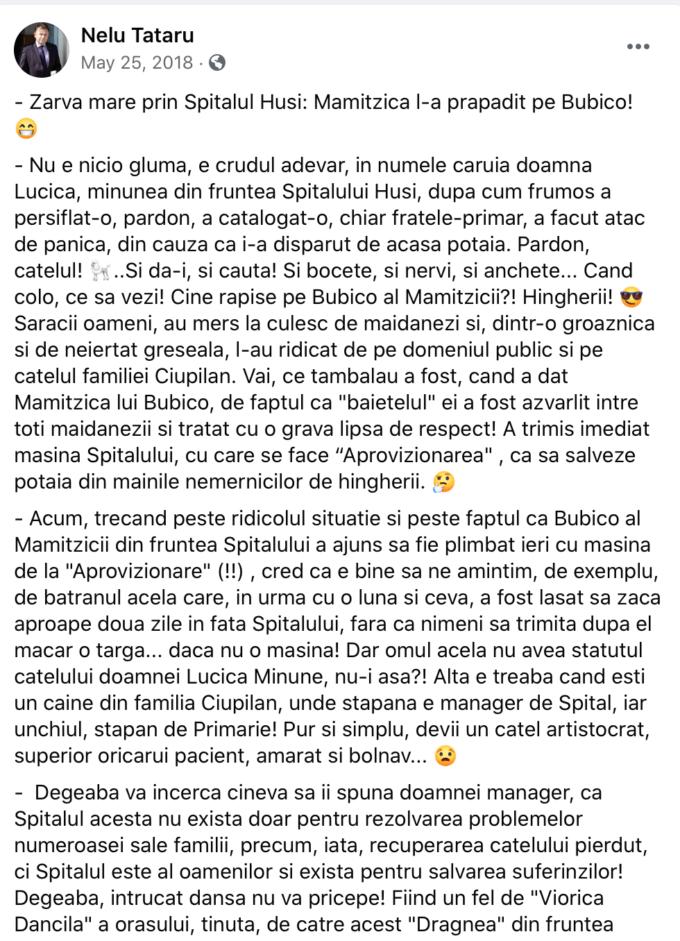Postare Facebook Nelu Tătaru