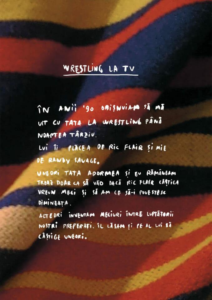 Wrestling la TV