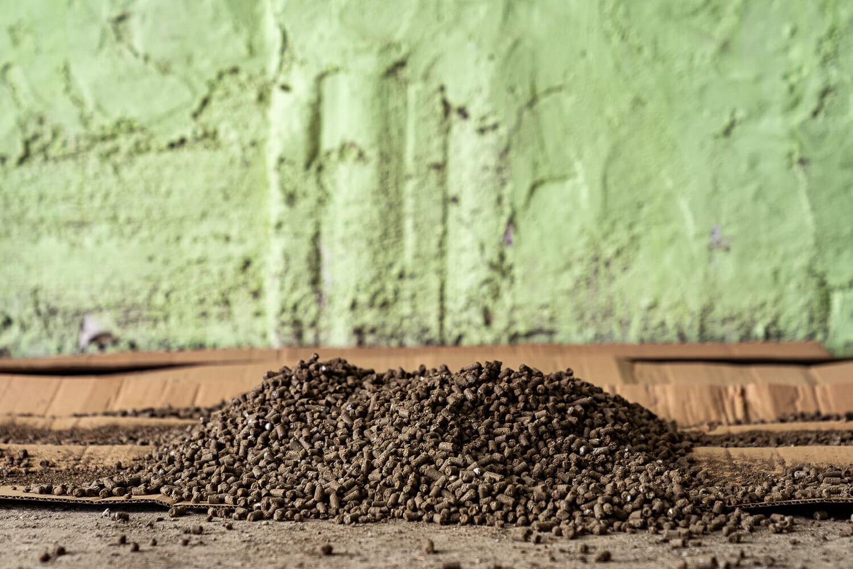 granule de îngrășământ formate din cenușa oilor.
