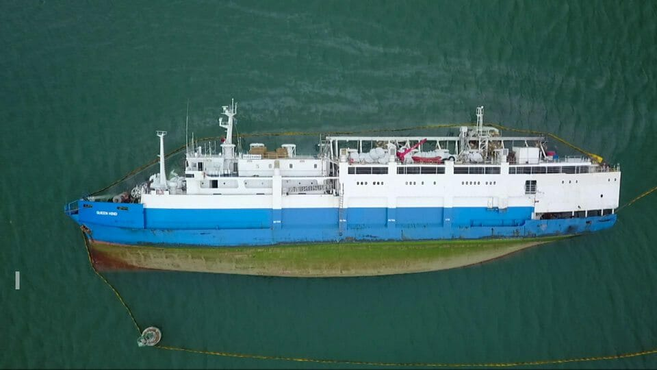 Nava Queen Hind răsturnată
