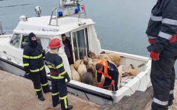 Oile salvate de pe navă, transportate în port.
