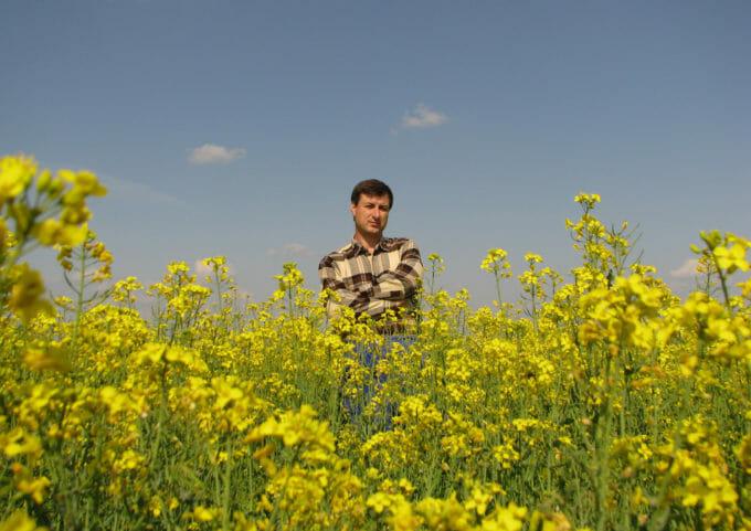 Ion Tarara într-un câmp de flori galbene