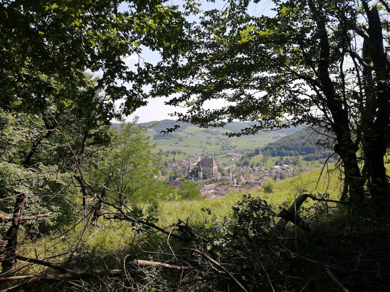 Panorama asupra Biertanului de pe traseu