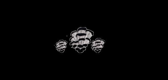 Ilustrație cu ciuperci